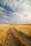 The road went off to horizon. Dry grass. Clouds Royalty Free Stock Photography