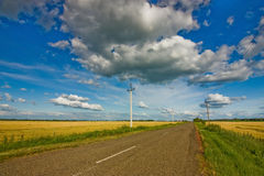 Road and wheat field Royalty Free Stock Images
