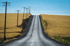 Road, wheat fields, Washington State Royalty Free Stock Images