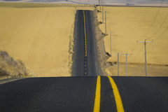 Road, wheat fields, Washington State Stock Image