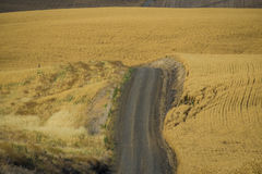 Road, wheat fields, Washington State Royalty Free Stock Photos