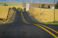 Road, wheat fields, Washington State Royalty Free Stock Photo