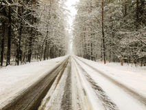 Road through white Winter Forest Stock Photography