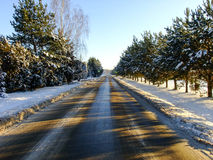 Road through white Winter Forest Royalty Free Stock Image
