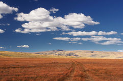 Road at a wide field of orange grass disappearing into the distance on a background of mountain rocky hills. Under white clouds and blue sky, Plateau Ukok Royalty Free Stock Image