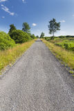 Road Through Wide Landscape In The High Fens, Belgium Stock Images