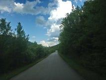 Road in wild stock photos