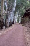 Road into Wilpena Pound from resort, SA, Australia royalty free stock photos