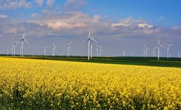 Road through Wind turbines in rapes field Royalty Free Stock Image