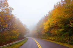 Road winding through beautiful foggy fall forest scenery. Stock Photos