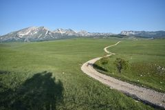 The road winding and disappearing at the distance, the Durmitor mountain at the background stock images