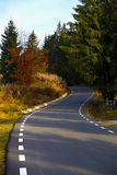 Road winding. Through the woods Stock Photo