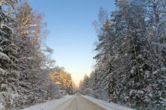 road winter Στοκ Εικόνα