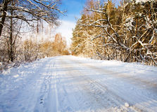 road in the winter Stock Photos