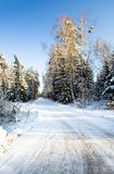 Road. winter Royalty Free Stock Images