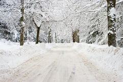 Road during the winter Stock Photography