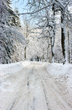 Road during the winter Royalty Free Stock Image