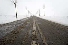 Road at winter Stock Images