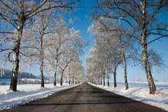 Road in winter. The empty road in snow Stock Photos