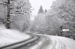 Road through the Winter Forest Royalty Free Stock Photos
