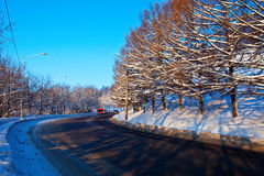 Road through  winter forest Royalty Free Stock Photo