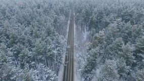 The road in the winter forest. stock video footage