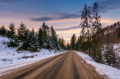 Road through winter forest at down. Road through winter forest at dusk. lovely transportation scenery in mountains with snowy hills Royalty Free Stock Image