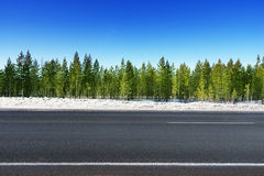 Road in winter forest Stock Photos