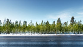 Road in winter forest Royalty Free Stock Photos