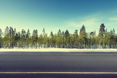 Road in winter forest Royalty Free Stock Photography