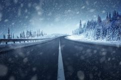 Road in winter forest stock photography