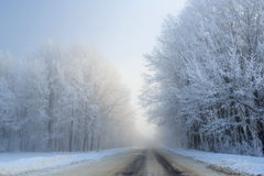 Road at the winter landscape in the forest Royalty Free Stock Photos