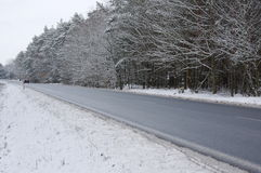 The road in the winter. Stock Photography
