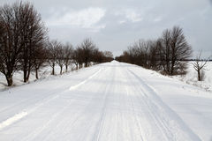 Road in winter season. Snow covered road with long alley of trees during winter season Stock Photo