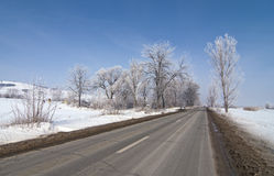 Road in winter with snow Stock Images