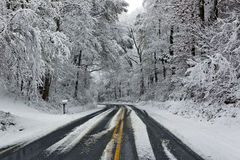 Road in Winter Snow Scene Royalty Free Stock Photography