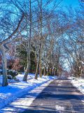 Road Through The Winter Snow. Snowy road through an urban street in Winter during the day. `Assignment Files royalty free stock images