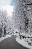 Road in the winter time Stock Image