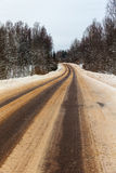 Road in the winter Stock Image