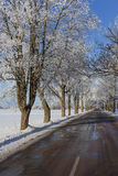 Road in winter. Wet road in sunny winter day Stock Photography