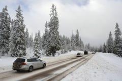 Road through a Winter Wonderland Royalty Free Stock Photo