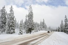 Road through a Winter Wonderland Royalty Free Stock Images