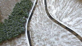 Road through the wintery forest stock footage