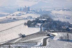Road through wintry hills and vineyards in Italy. royalty free stock image
