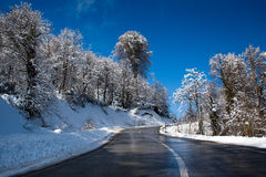 Road through wintry landscape Royalty Free Stock Image
