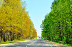 Free Road With Boundary Of Seasons Royalty Free Stock Image - 14738066