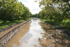 Free Road With Puddle Stock Photography - 16852012