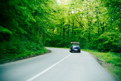Road In Wood. After summer rain Royalty Free Stock Photography