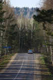 Road in wood. The road in forest, Russian landscape Royalty Free Stock Photography