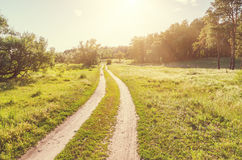 road in wood in sunset Stock Photography
